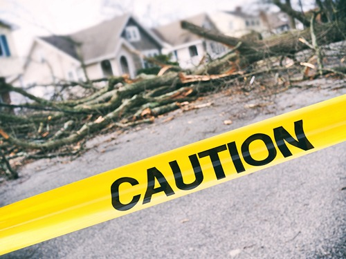 Emergency Tree Assistance in Tulsa, Oklahoma
