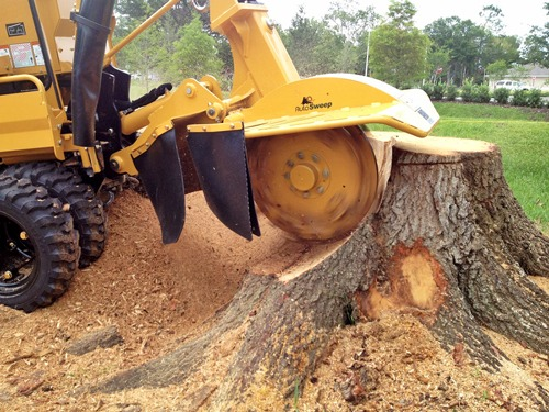 Stump grinding and removal in Tulsa, Oklahoma
